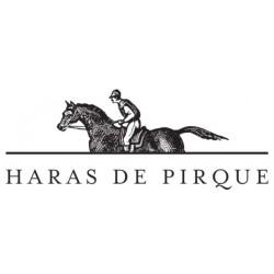 logo Haras de Pirque by Antinori