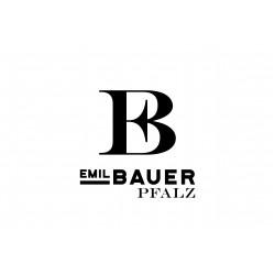 Emil Bauer